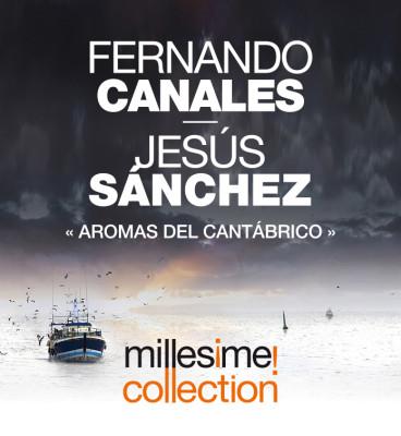 banner-canales-sanchez (1)